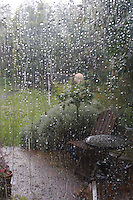 Rainy view out window into garden in Dublin Ireland