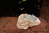 Worn Bible on a window sill in Isosog