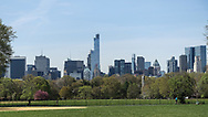 Midtown skylines seen over the Great Lawn of Central Park.