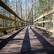 8 - Congaree National Park