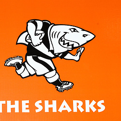 22,08,2019 The Cell C Sharks Press Conference