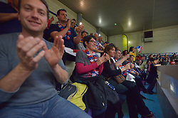 France V NZL, Spectators at the 2016 IWRF Rio Qualifiers, Paris, France