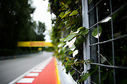 June 9-12, 2016: Canadian Grand Prix. Circuit Gilles Villeneuve circuit detail