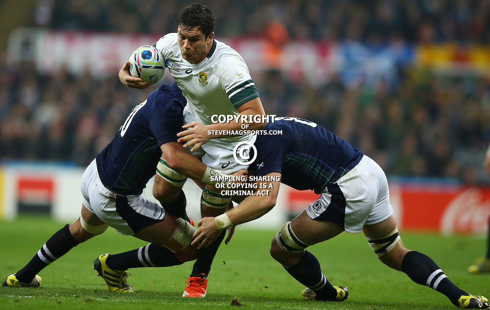 NEWCASTLE UPON TYNE, ENGLAND - OCTOBER 03: Francois Louw of South Africa during the Rugby World Cup 2015 Pool B match between South Africa and Scotland at St James Park on October 03, 2015 in Newcastle upon Tyne, England. (Photo by Steve Haag/Gallo Images)