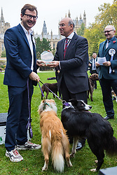 London, October 26 2017. Lord Gardiner hands Alex Norris MP The People's Choice award for his Border Collies Boomer and Corona at the annual Kennel Club and Dogs Trust Westminster Dog Of The Year competition that sees MPs and members of the House of Lords with their dogs as well as rescue dogs from the Dogs Trust. © Paul Davey