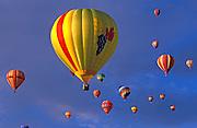 Hot air balloons rising in dawn light at the International Balloon Fiesta, Albuquerque, New Mexico USA