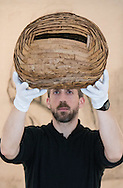 """A gallery technician displays Andy Goldsworthy's leafwork """"Sweet Chestnut Leaves and Blackthorns"""" created in Dumfriesshire in 2013, at the preview for the It's Our World charity auction at Christie's, Mayfair, London.<br /> Picture by Paul Davey/Focus Images Ltd +447966 016296<br /> 04/03/2016"""