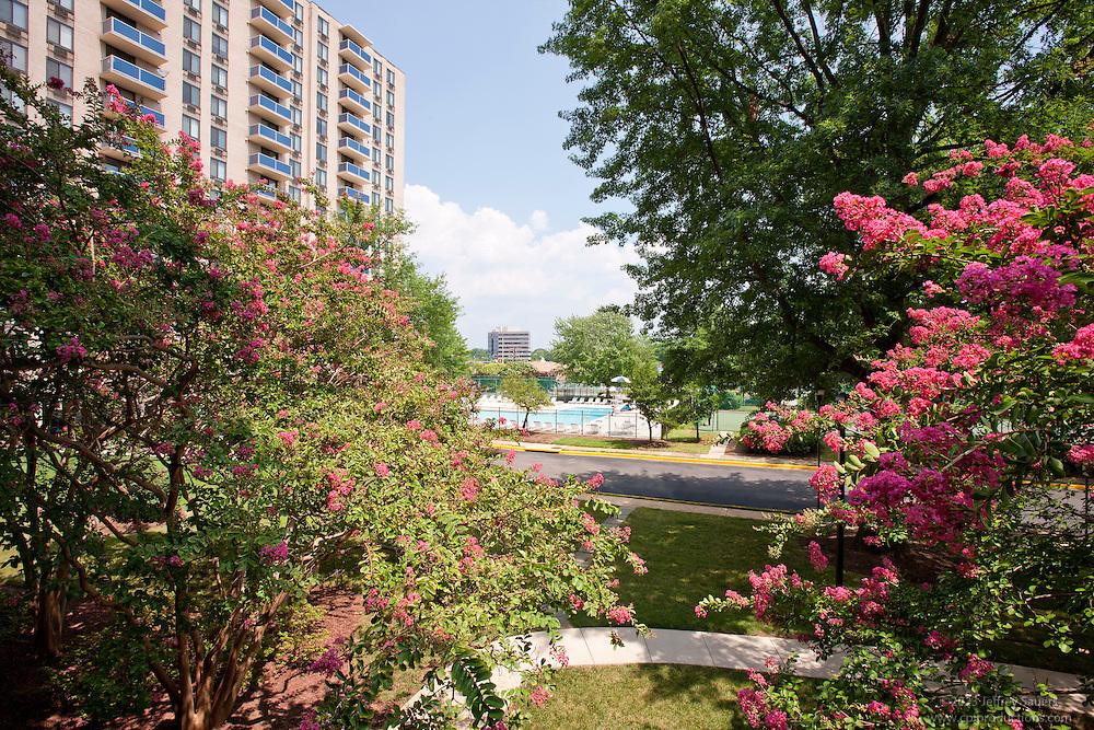 Alexandria Virginia Apartments Riverside Image ...