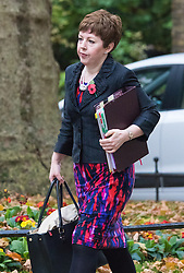 Downing Street, London, November 3rd 2015.  Leader of the House of Lords Baroness Stowell  arrives at 10 Downing Street to attend the weekly cabinet meeting. /// Licencing: Paul@pauldaveycreative.co.uk Tel:07966016296 or 020 8969 6875
