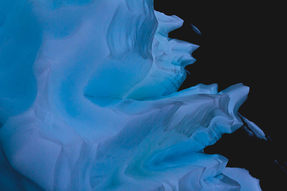 Iceberg Details at Eskimo Bukta, Greenland