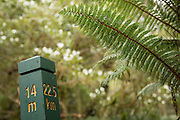 Just how far is the Milford Track?  The total length is 53.5 kilometres, or 33.2 miles. Here is the 14-mile post along the Milford Track.