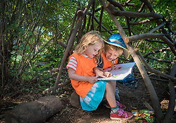 Tiny Trees makes high-quality nature-rich preschool affordable by utilizing Seattle and King County parks.