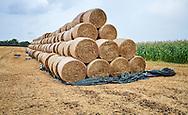 Rollen van hooi in de buurt van Palladru, Frankrijk - Rolls of hay near Palladru, France