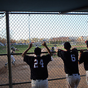 McMahon Senators players encourage their team mates during an extra inning 3-2 win during the High School Baseball ball game between Trumbull Golden Eagles and McMahon Senators at Brien McMahon High School. Norwalk, Connecticut. USA. 26th April 2012. Photo Tim Clayton