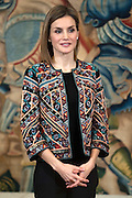 MADRID, SPAIN, 2015, DECEMBER 16<br /> <br /> Queen Letizia preside the two hearings which took place at the Palacio de la Zarzuela. The first with a representation of Radio Television Spanish and the Grow Playing Foundation and the second with a representation of the Board of the Foundation for Help Against drug addiction and Delivery of Master Action Awards 2015<br /> ©Exclusivepix Media