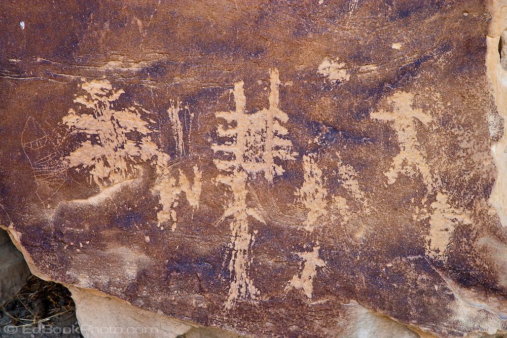 Vandalized Fremont People rock art petroglyph (prehistoric rock carving dated 600-1300 AD) in the Douglas Creek Canyon south of Rangely, Colorado, USA on Bureau of Land Management (BLM) public lands.