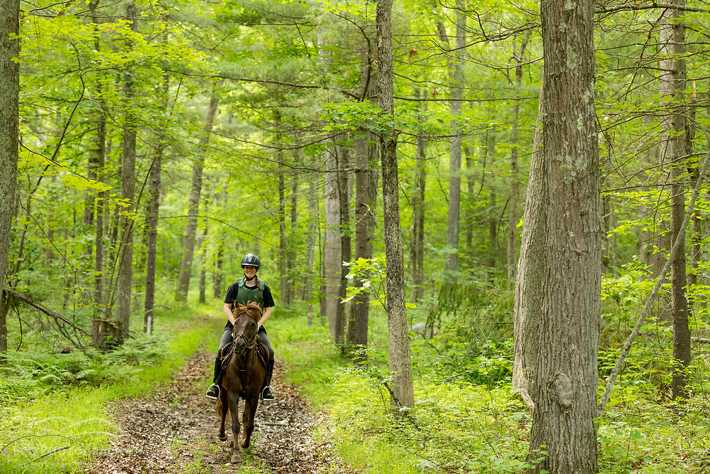 A woman rides a pony in a forest at the Donibristle Reservation in Topsfield, Massachusetts.