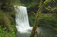 Lower South Falls, Silver Falls State Park, Oregon