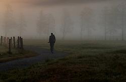 THEMENBILD - eine Frau spaziert auf einem Weg im Nebel mit Silhouetten von Bäume, aufgenommen am 11. Mai 2017, Kaprun, Österreich // A woman walking on a path in the fog with silhouettes of trees at Kaprun, Austria on 2017/05/11. EXPA Pictures © 2017, PhotoCredit: EXPA/ JFK