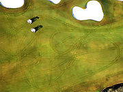 Early morning aerial view of fairway with golf cart tracks in the grass of Weston Hills Country Club, Weston, Florida