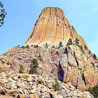 Devils Tower, Base Rocks and Pine at Devils Tower National Monument, Wyoming<br />