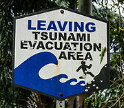 "A bold sign ""LEAVING TSUNAMI EVACUATION AREA"" shows a person running from waves. Did you notice the bright green gecko clinging to the sign? Introduced to Hawaii, the gold dust day gecko (Phelsuma laticauda) is native to northern Madagascar and the Comoros. It is commonly known as the mascot of GEICO. Laupahoehoe Point County Park, on the Hamakua Coast, Big Island, Hawaii, USA."