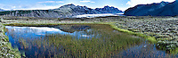 Summer Panorama of Skaftafell National Park in Iceland - Marsh, Reflection, Mountains, and Glacier. Composite of 4 images taken with a Leica X2 camera (ISO 100, 24 mm, f/11, 1/125 sec) combined using AutoPano Giga Pro. Nikonians Academy Photo Adventure with Mike Hagen and Tim Vollmer