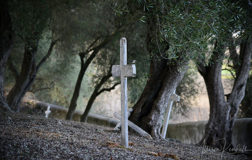 The cemetery and grounds of mission San Juan Bautista