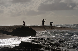 Beach walkers at Lae o Kaonohi near the Hanalei Colony Resort on the north shore of the island of Kauai in Hawaii.
