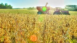 Colheita em lavoura de soja no município de São Borja, no Rio Grande do Sul. FOTO: Jefferson Bernardes/Preview.com