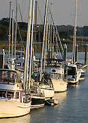 Various types of boats docked at a Jekyll Island boat dock.