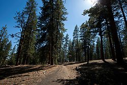 Cider Cone hiking trail, Lassen Volcanic National Park, California, United States of America