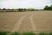 agricultural land spring time Languedoc Aude France