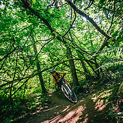 Heather Goodrich rolls through the maples on the Galbraith Trail system near Bellingham Washington.