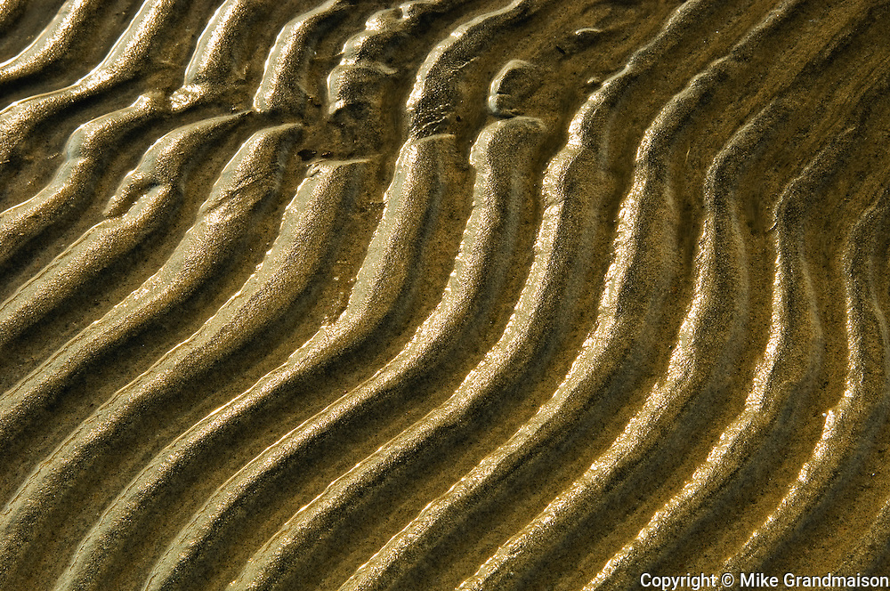 Ripples in the sand, shore of Georgian Bay; Wahnekewaning Beach<br /> Wahnekewaning Beach<br /> Ontario<br /> Canada