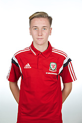 CARDIFF, WALES - Wednesday, September 24, 2014: Wales' Theo Llewellyn. (Pic by David Rawcliffe/Propaganda)