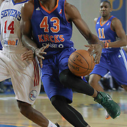 Westchester Knicks Forward Thanasis Antetokounmpo (43) drives towards the basket as Delaware 87ers Forward Malcolm Lee (14) defends in the first half of a NBA D-league regular season basketball game between the Delaware 87ers and the Westchester Knicks (New York Knicks) Sunday, Dec. 28, 2014 at The Bob Carpenter Sports Convocation Center in Newark, DEL