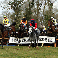 Action from the second race at the Dromoland Point to Point on Sunday.<br />
