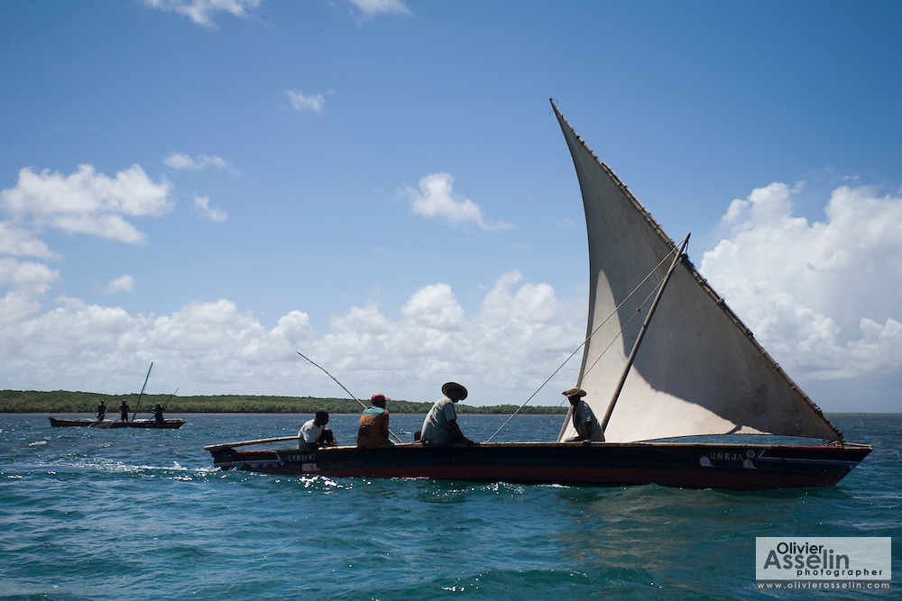 Fishing sailboats off Lamu Island, Kenya, Africa.
