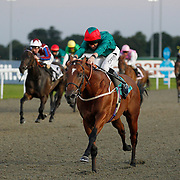Henry Clay and Neil Callan winning the 8.30 race