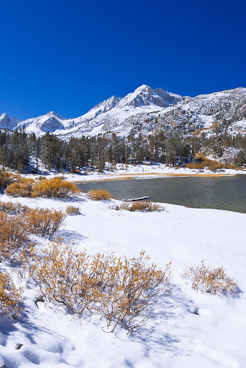 Fresh snow on Mount Abbot from Long Lake, John Muir Wilderness, Sierra Nevada Mountains, California