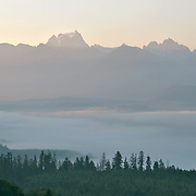 The view from a logging road near Lake Cavanaugh, Washington.  Photo by William Byrne Drumm.