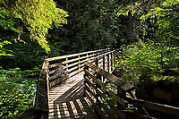 Wooden bridge along the trail to Wallace Falls in Wallace Falls State Park, Washington, USA
