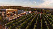 Aerial perspective over Raptor Ridge Winery & estate vineyard, Chehalem Mountains, Willamette Valley, Oregon