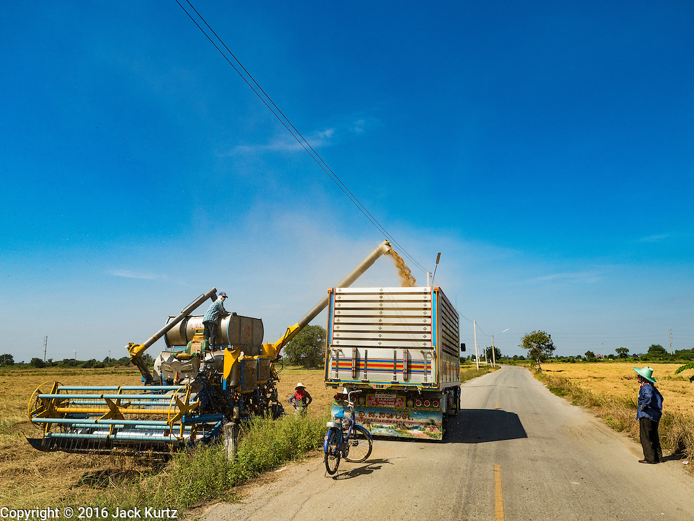 "23 NOVEMBER 2016 - AYUTTHAYA, THAILAND: Rice is transferred from a harvester to a truck during the rice harvest in Ayutthaya province, north of Bangkok. Rice prices in Thailand hit a 13-month low early this month. The low prices are hurting farmers. Rice exports account for around 10 percent of Thailand's gross domestic product, and low prices frequently lead to discontent in the rural areas of Thailand. The military government has responded by sending soldiers to rice mills, to ""encourage"" mill owners to pay farmers higher prices. The Thai army and navy are also buying for their kitchens directly from farmers in an effort to get more money into farmers' hands.  PHOTO BY JACK KURTZ"