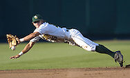 Baylor shortstop Paul Witt lays out for a sharp ground ball in the fourth inning against the Texas Longhorns.  Texas defeated Baylor in the first round of the College World Series 5-1 at Rosenblatt Stadium in Omaha, Nebraska on June 18, 2005.
