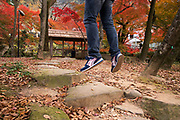 Autumn scenes at Gifu Park