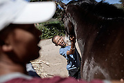 Juneal Jacobs - age 12 - Juneal is in the protection of Elkana Childcare and currently participates in the Montrose Equine Youth Development Programme 25 December 2011..Equine assisted therapy at De Grendel farm Cape Town, through the Montrose clinic and foundation.The clinic treats patients with addiction illnesses such as alcoholism and eating disorders and the foundation is a charity that helps with street children from the townships..Elkana Childcare Safe house, adrop-in centre and a shelter for children on the street. The centre is based in Malmesbury, Western Cape and is for children who have been through emotional, physical and sexual misuse..