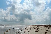West of Martin Beach 8/06