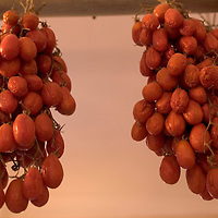 10 May, 2004:  Tomatoes hang to dry in the resturant Il Ritrovo in the town of Montepertuso  on May 10, 2004.